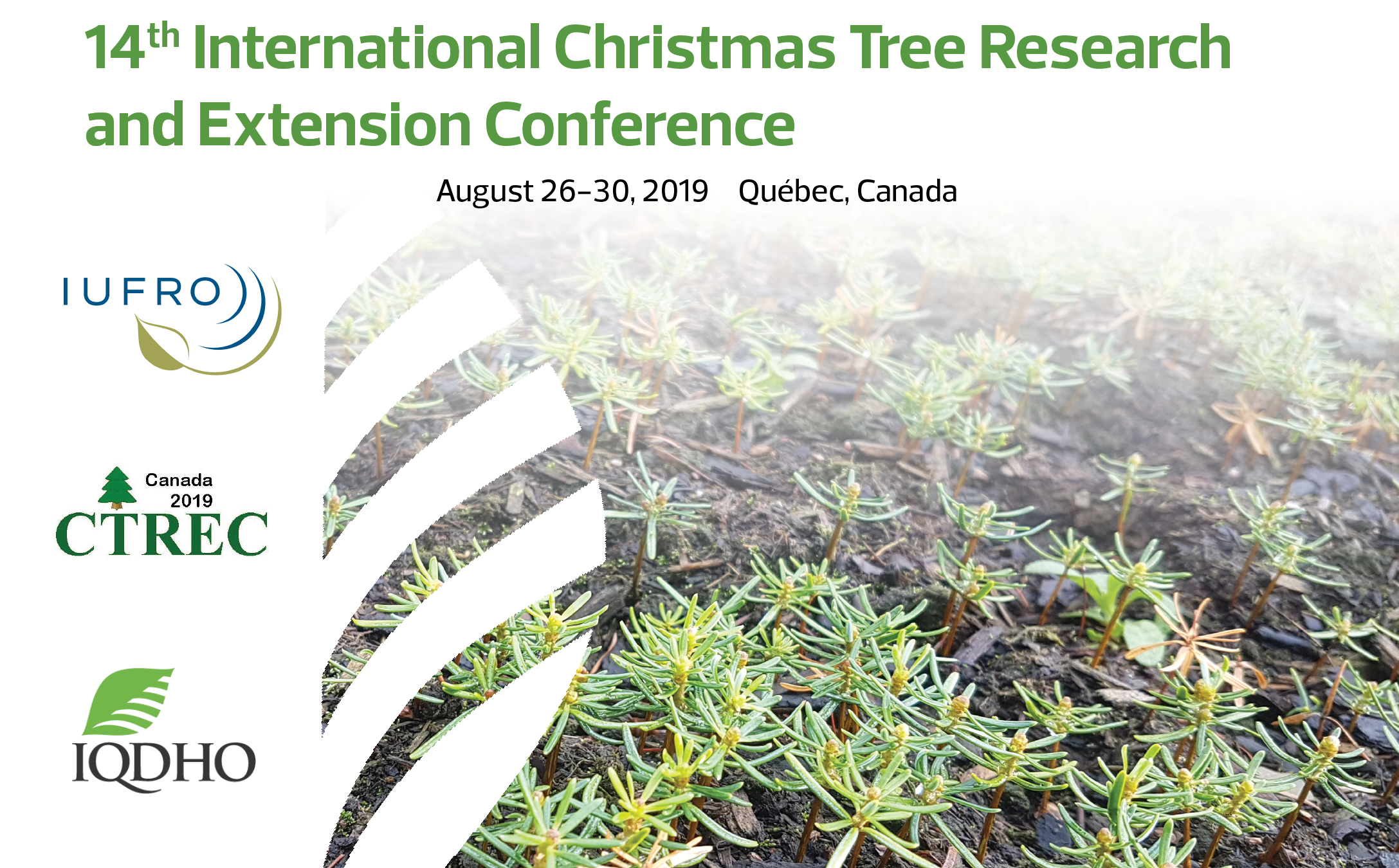 International Christmas Tree Research and Extension Conference 2019 - IQDHO