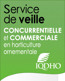 Service veille iqdho